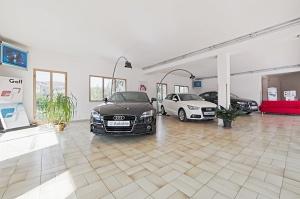 Salone esposizione Audi Volkswagen Arcidosso Grosseto